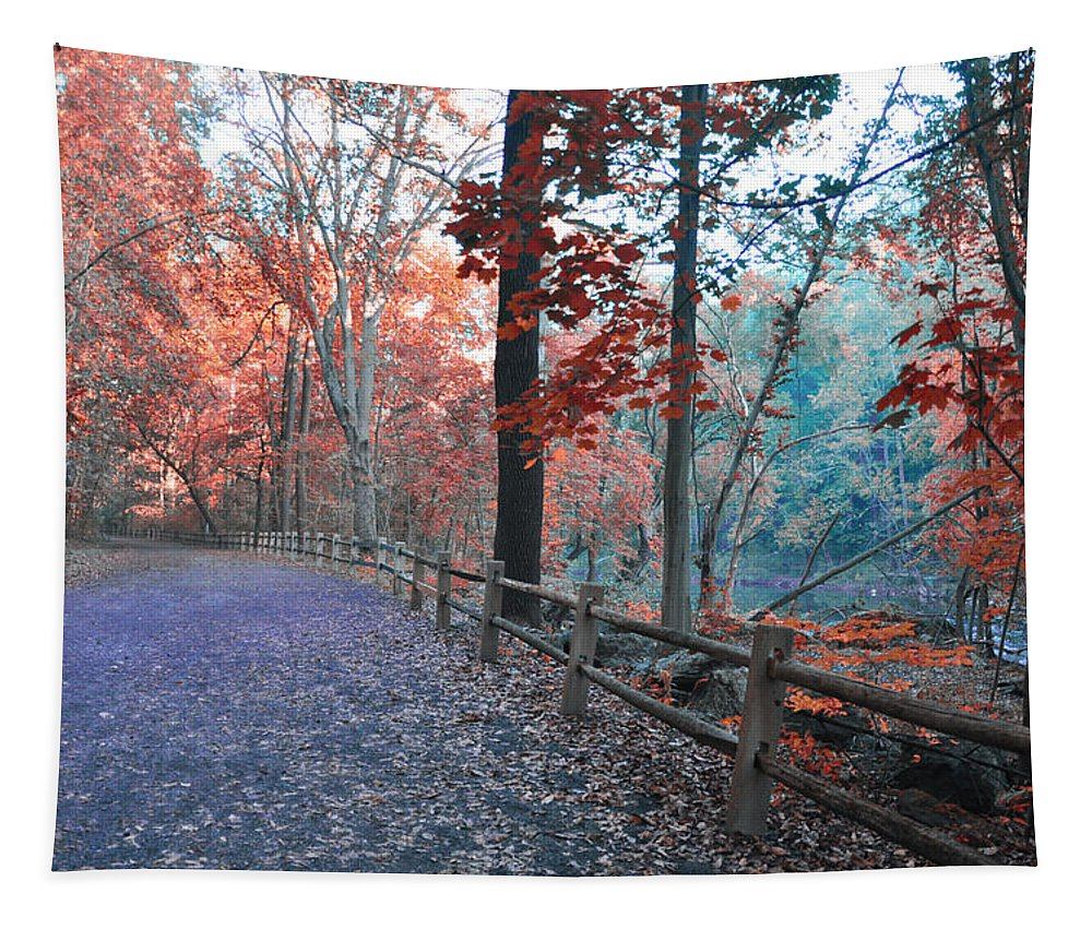 Fall On Forbidden Drive Tapestry featuring the photograph Fall On Forbidden Drive by Bill Cannon