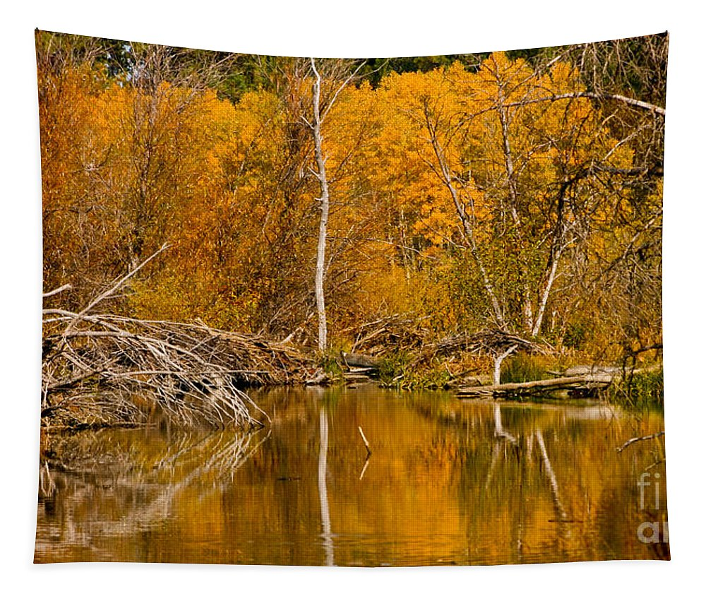 Fall Tapestry featuring the photograph Fall On Taylor Creek by Mitch Shindelbower