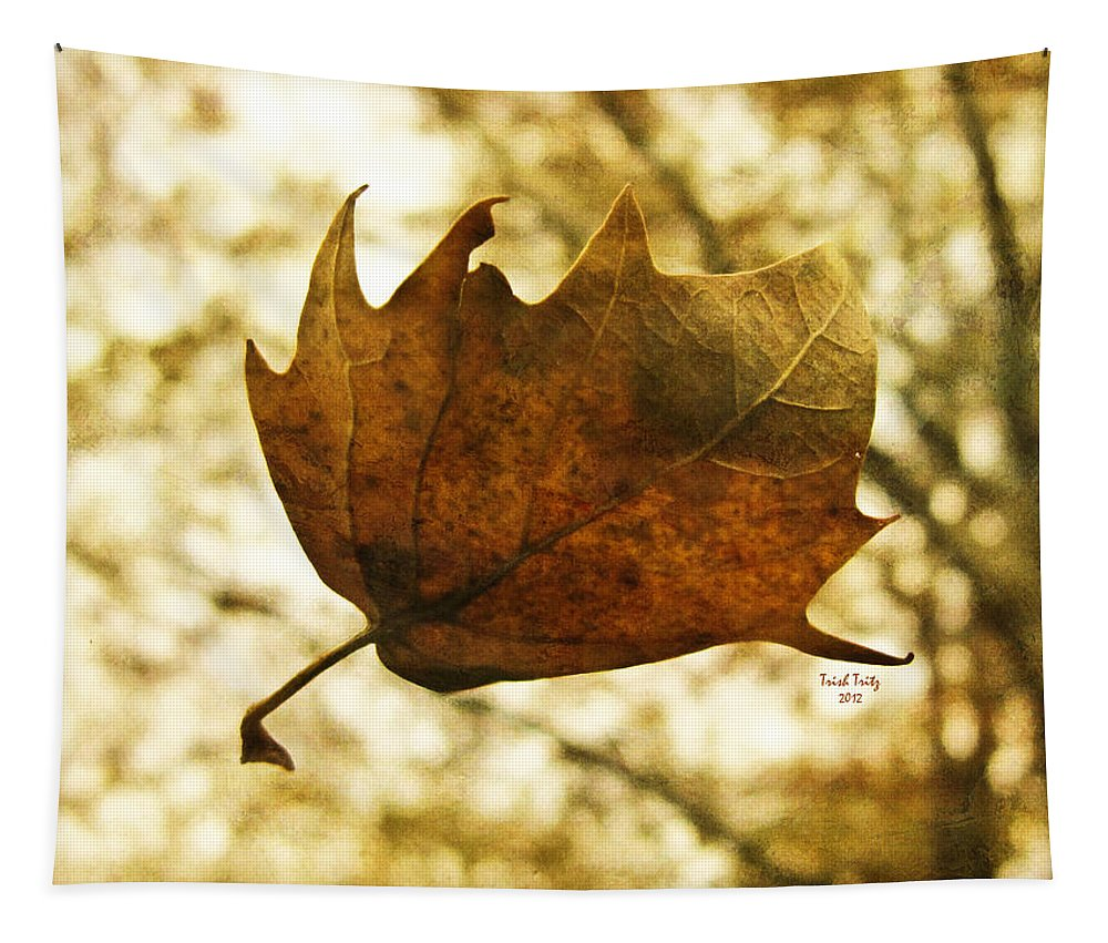 Fall Tapestry featuring the photograph Fall by Trish Tritz