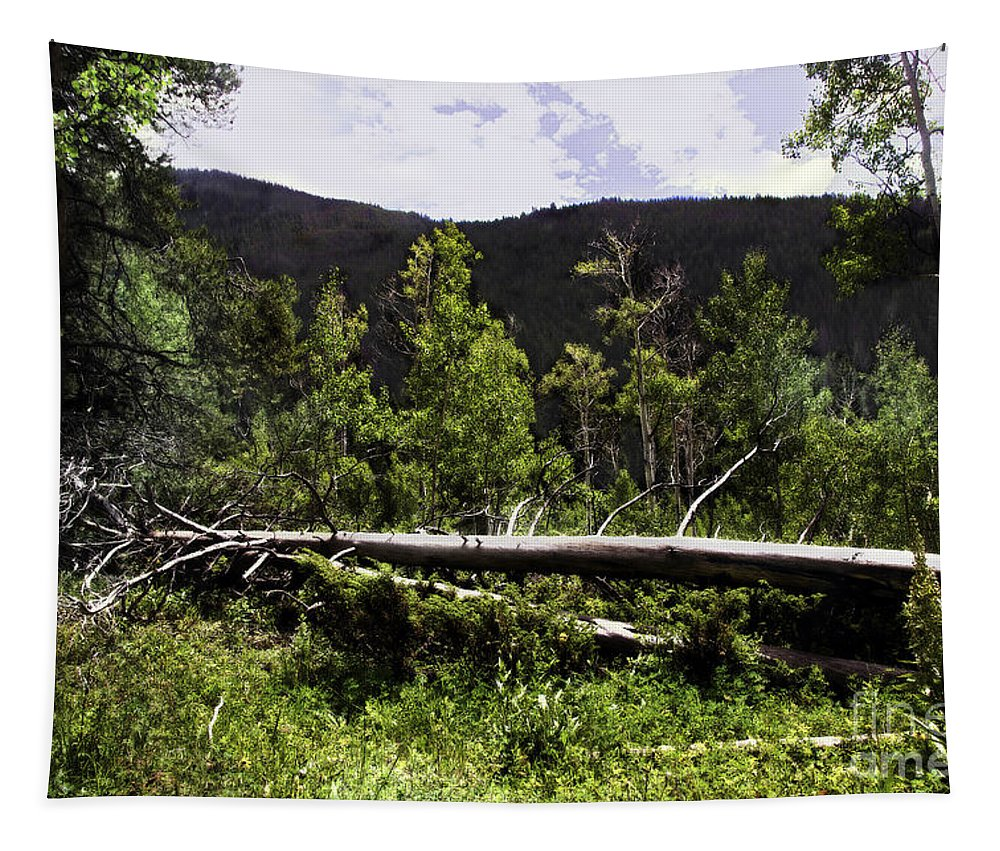 Trees Tapestry featuring the photograph Fallen Tree by Madeline Ellis
