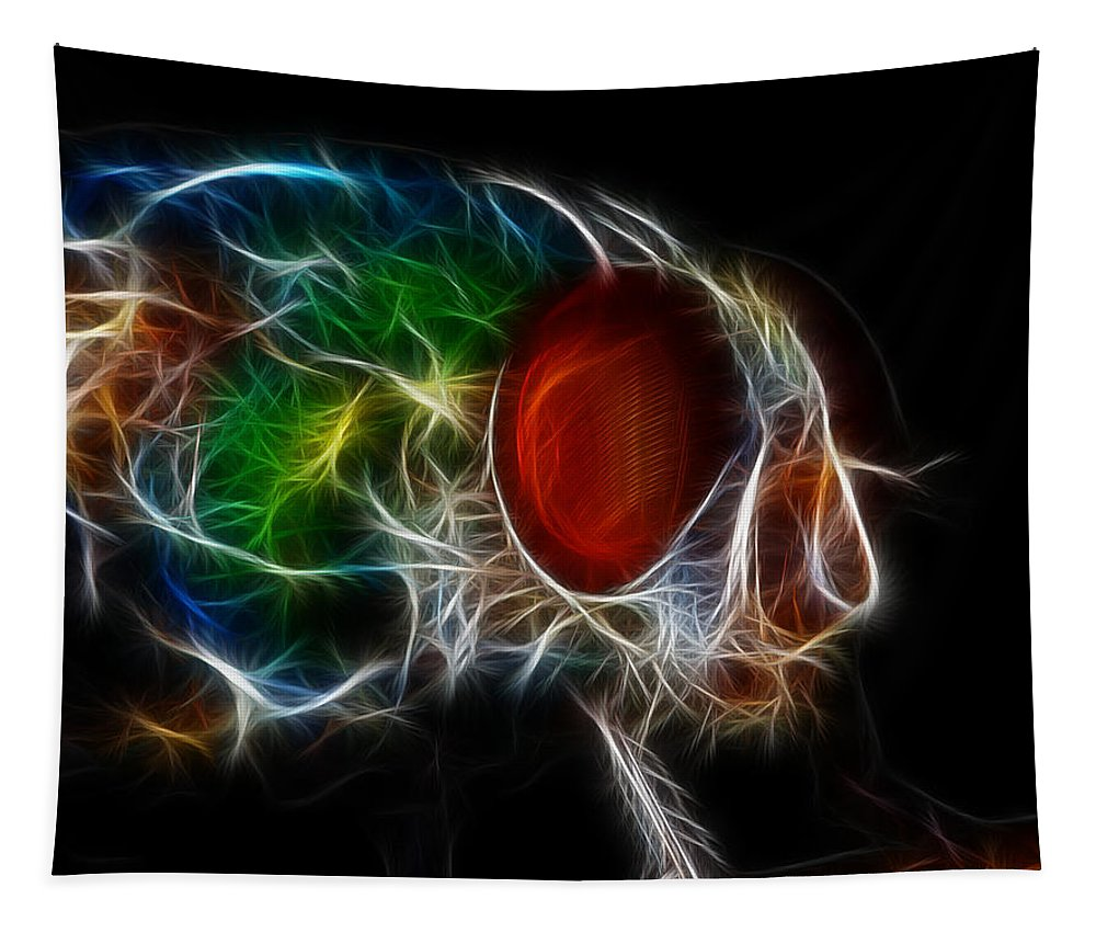 Abstract Tapestry featuring the photograph Fantasy Fly by Paul Ward