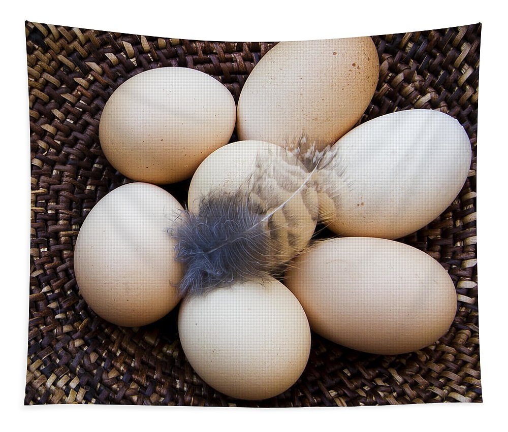 Nature Tapestry featuring the photograph Feathered Eggs by Jean Noren