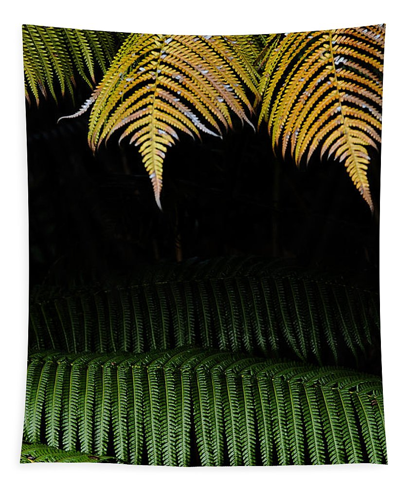Hawaii Tapestry featuring the photograph Fern Palm 2 by Bob Christopher