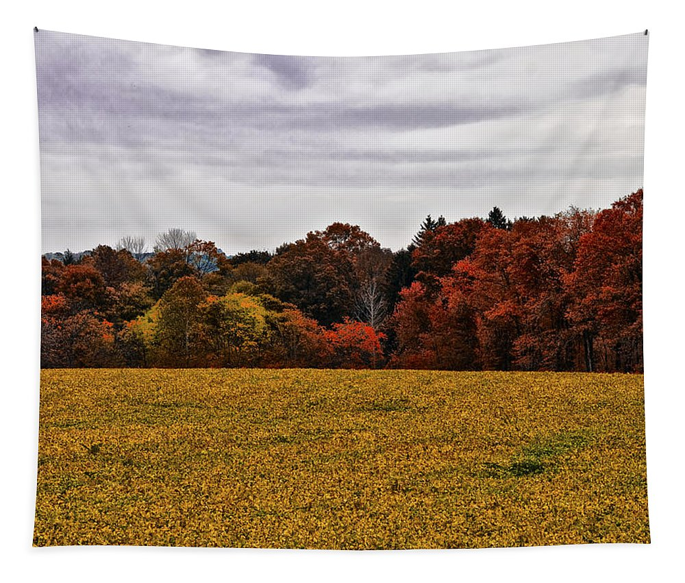 Fields Of Gold Tapestry featuring the photograph Fields Of Gold by Bill Cannon