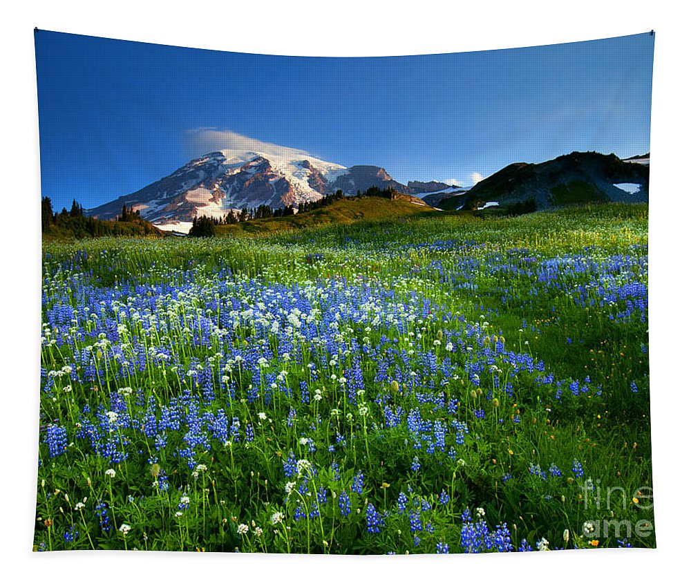 Meadow Tapestry featuring the photograph Fields Of Paradise by Mike Dawson