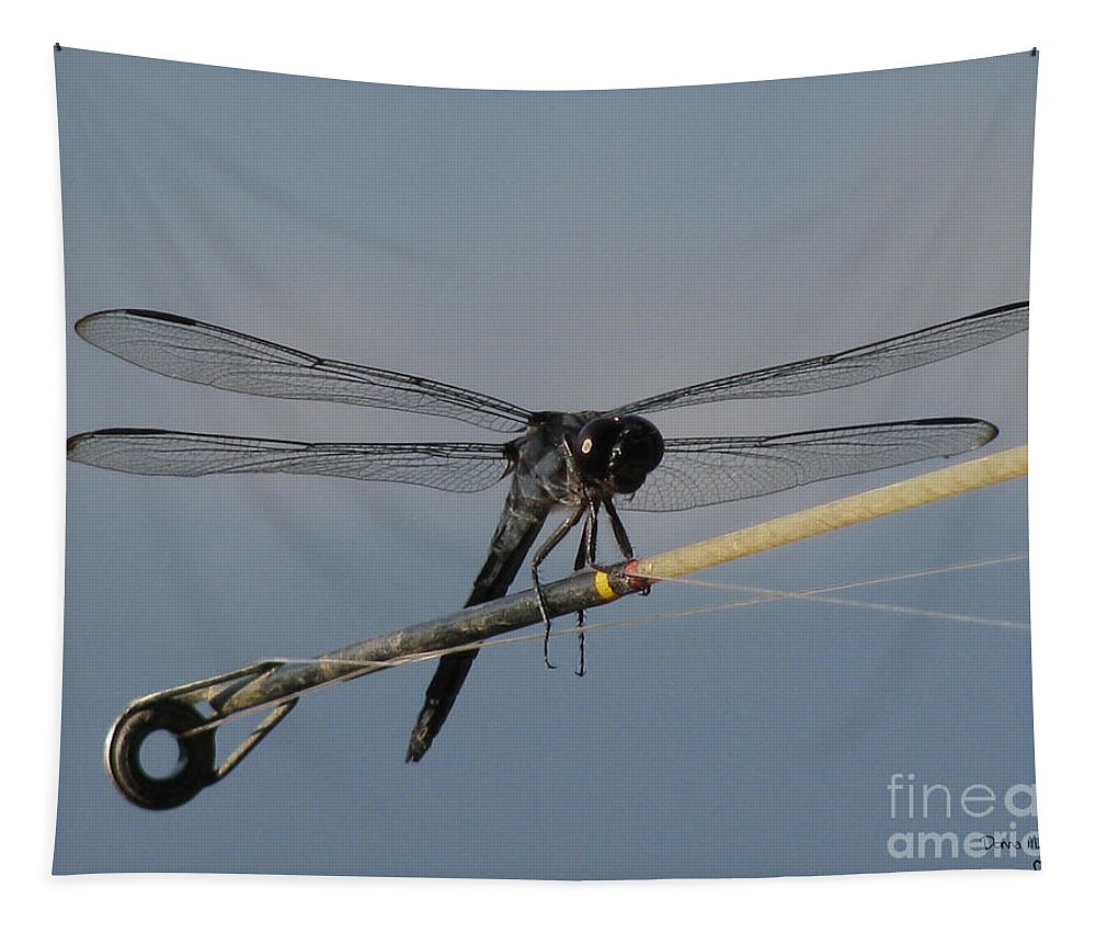 Insect Tapestry featuring the photograph Fishing Bubby by Donna Brown