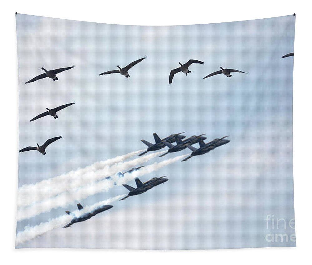 Air Show Tapestry featuring the photograph Flock Of Canada Geese At Air Show by Oleksiy Maksymenko