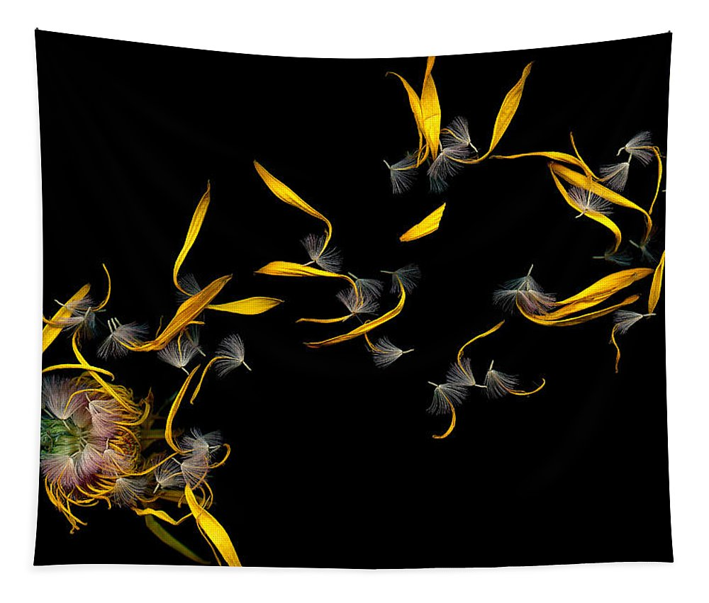 Sneeze Tapestry featuring the photograph Flower - Daisy - Gone With The Wind by Mike Savad