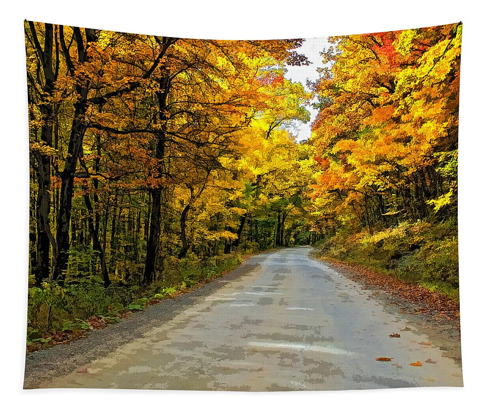 West Virginia Tapestry featuring the photograph Follow The Yellow Leafed Road Painted by Steve Harrington