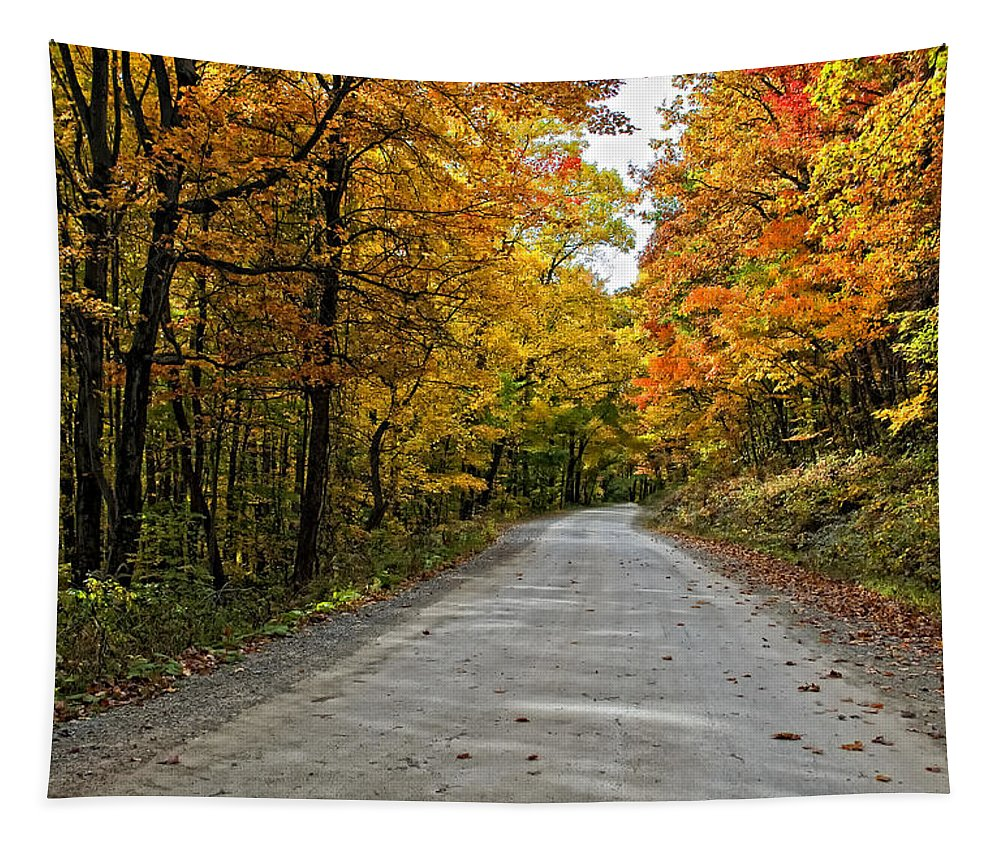 West Virginia Tapestry featuring the photograph Follow The Yellow Leafed Road by Steve Harrington