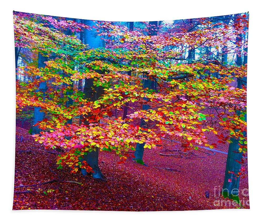 Tree Tapestry featuring the photograph Forest Color Leaves by Go Van Kampen