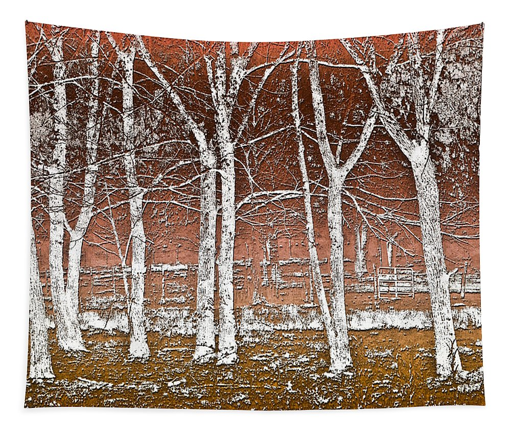 Fine Tapestry featuring the photograph Forest Ghosts by Debra and Dave Vanderlaan