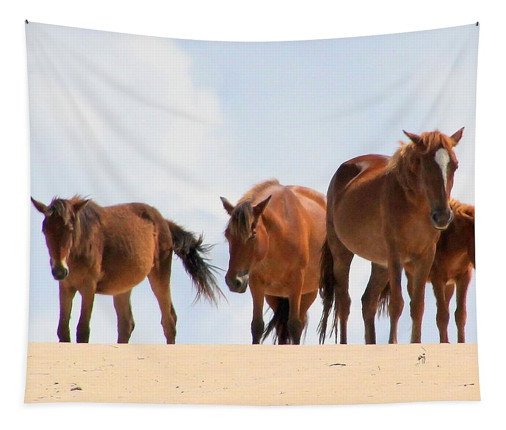 Horse Tapestry featuring the photograph Four Wild Mustangs by Laurel Talabere