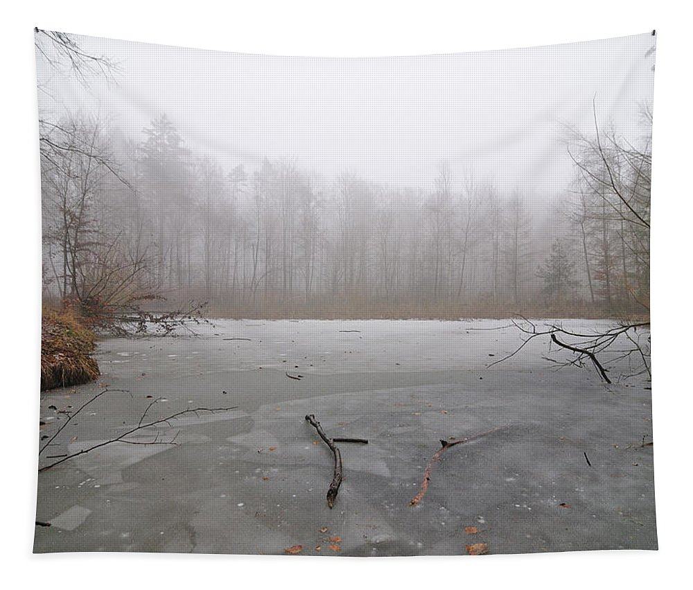 Winter Tapestry featuring the photograph Frozen Lake In Winter by Matthias Hauser