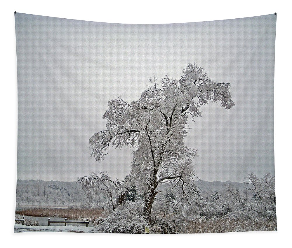Landscape Tapestry featuring the photograph Frozen Tree by Aimee L Maher ALM GALLERY