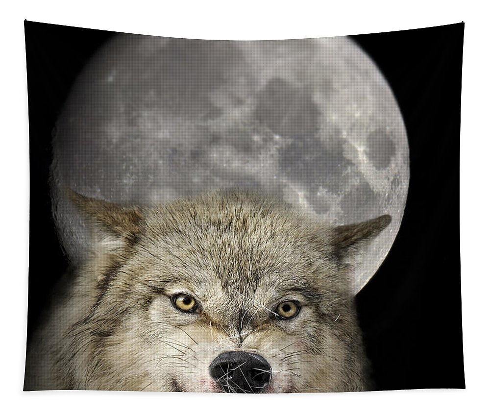 Full Moon Tapestry featuring the photograph Full Moon Wolf by Wildlife Fine Art