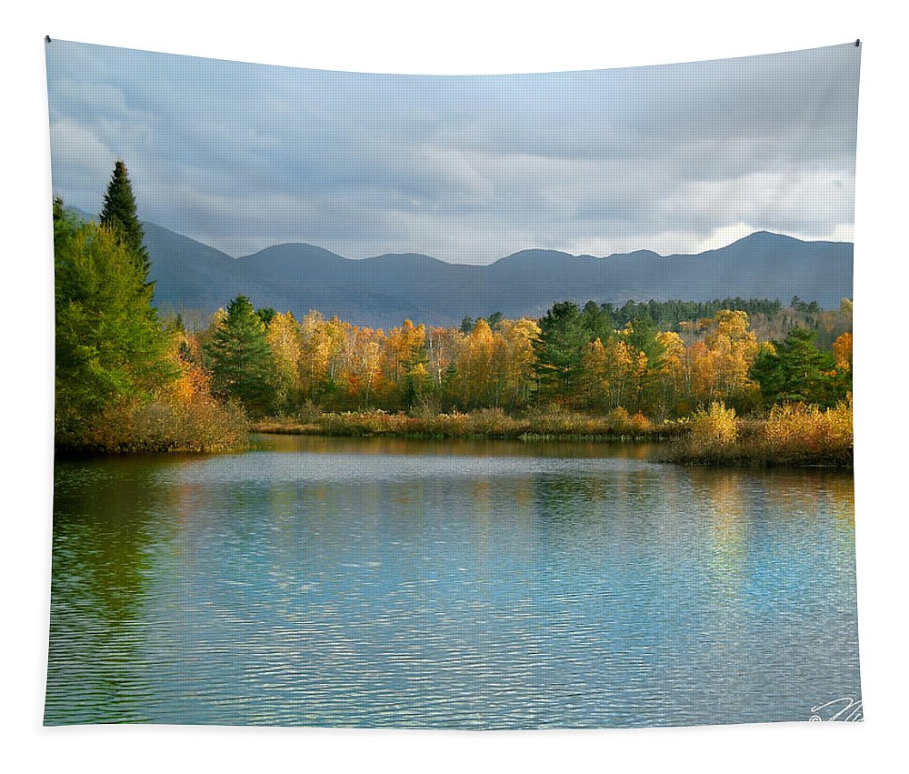 White Mountain Tapestry featuring the photograph Gale River In Franconia New Hampshire by Nancy Griswold