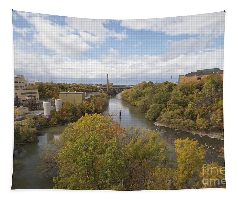 Tapestry featuring the photograph Genesee River by William Norton