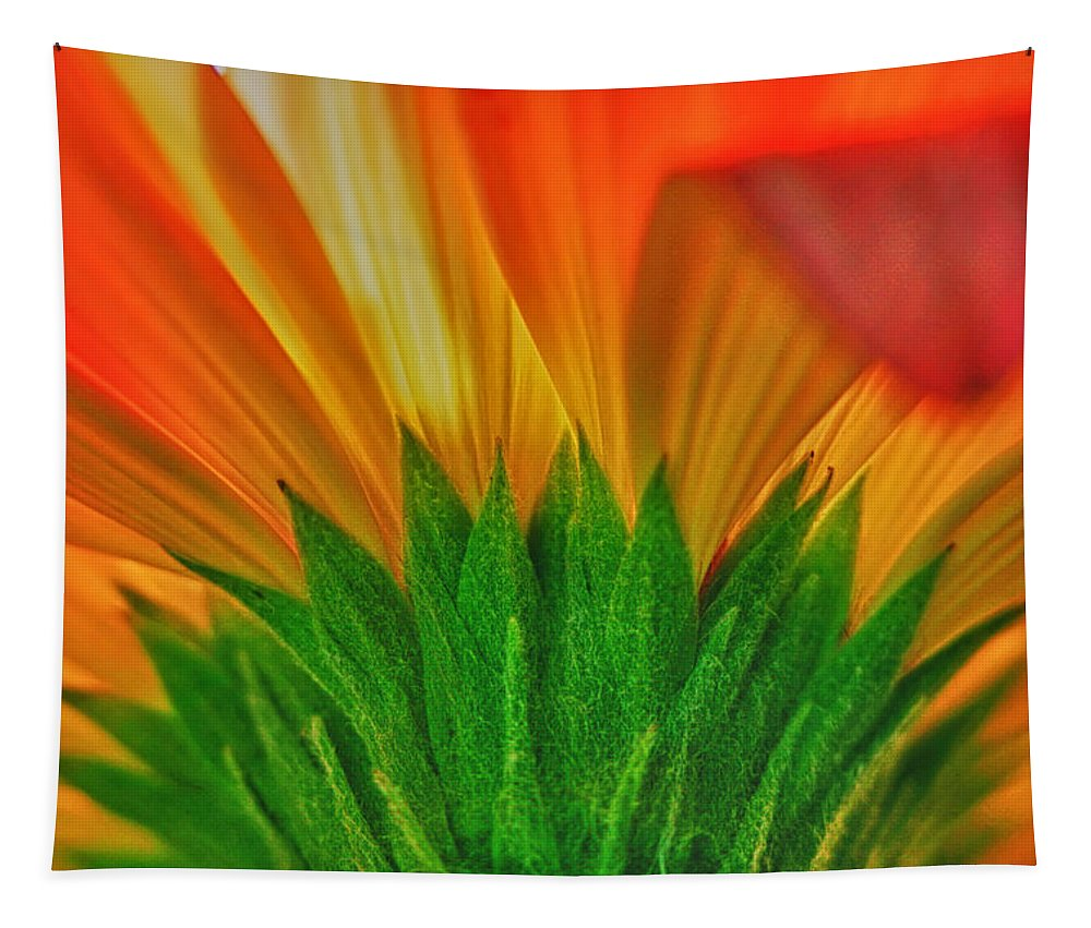 Abstract Tapestry featuring the photograph Gerbera Explosion by Stelios Kleanthous