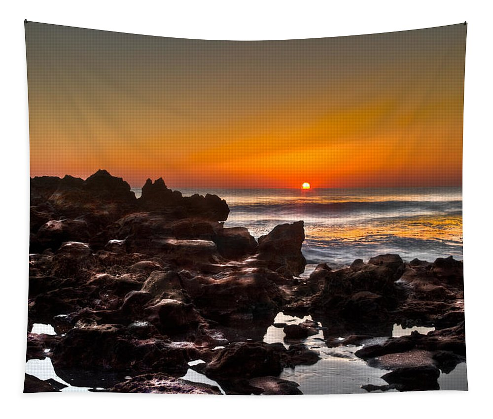 Blowing Rocks Tapestry featuring the photograph Golden by Debra and Dave Vanderlaan