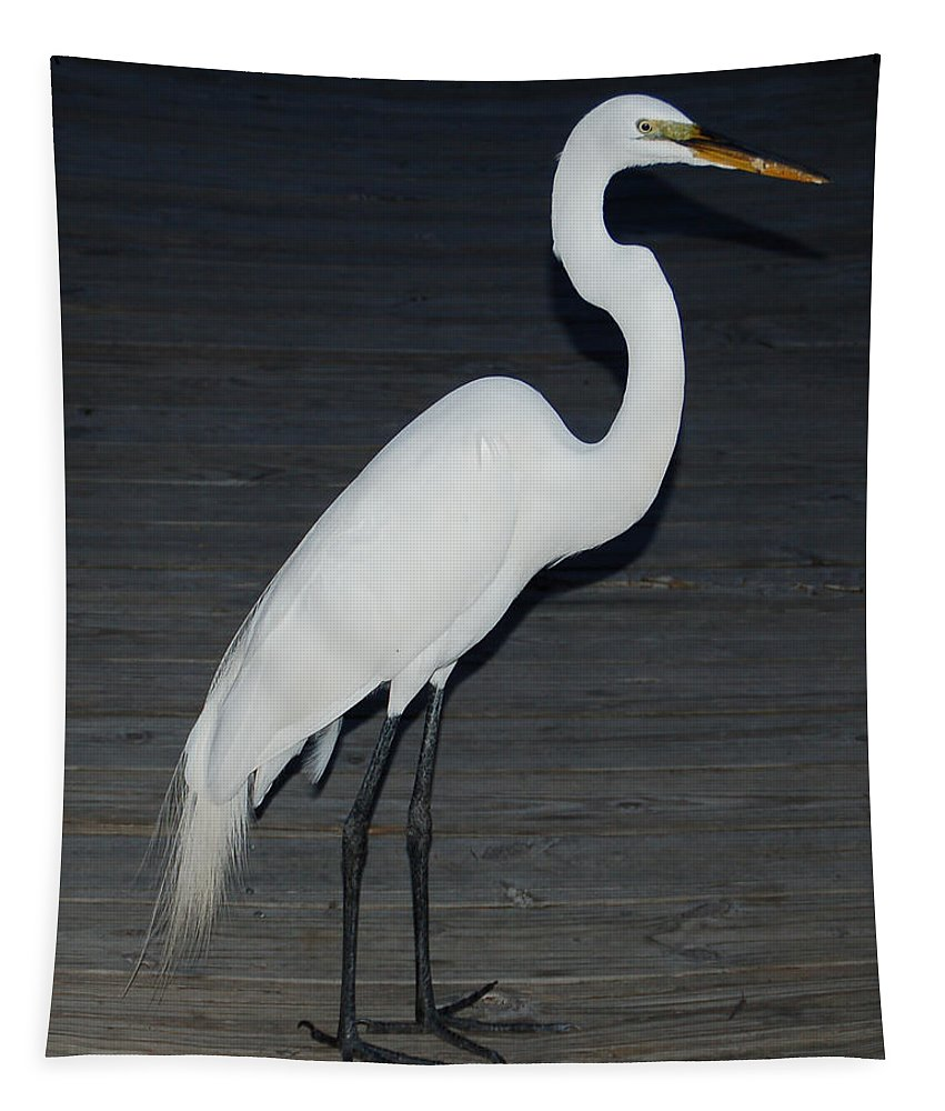 Egret Tapestry featuring the photograph Snowy Egret by Aimee L Maher ALM GALLERY