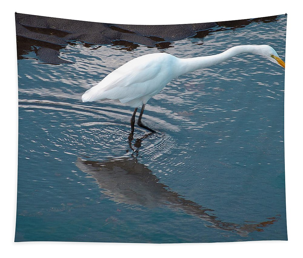 Egretn Great White Tapestry featuring the photograph Great White Egret by David Patterson