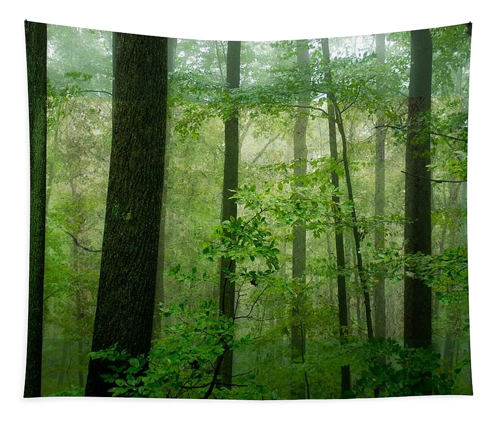 Green Tapestry featuring the photograph Greener Than Green by Trish Tritz