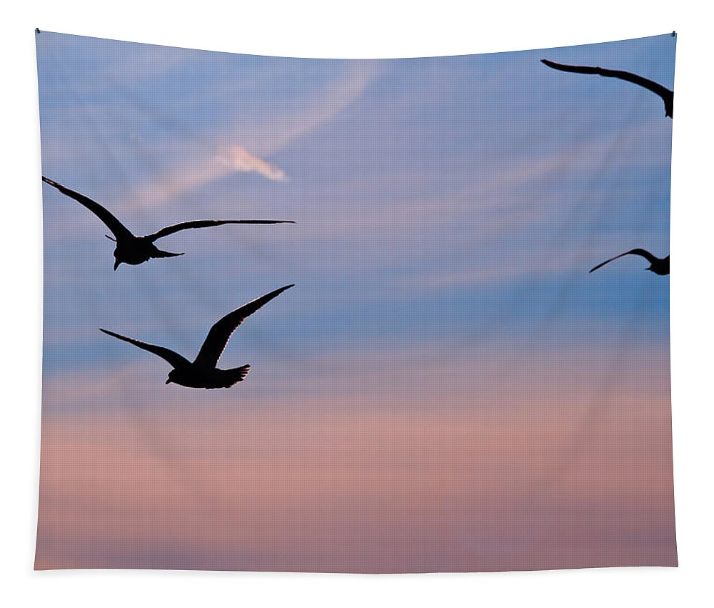 Seagulls Tapestry featuring the photograph Gulls At Dusk by Karol Livote