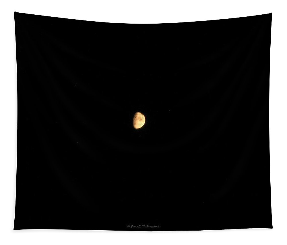 Lunar Phase Tapestry featuring the photograph Half Moon by Sonali Gangane
