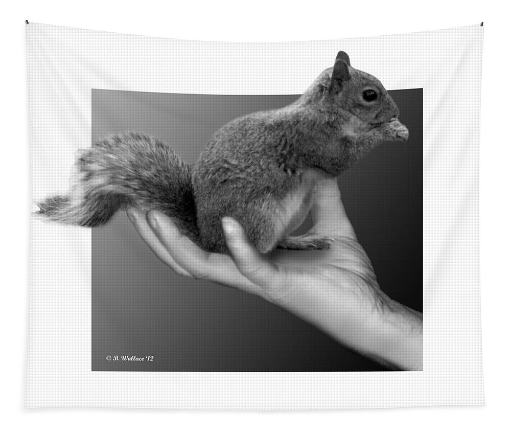 2d Tapestry featuring the photograph Hand Full Of Squirrel by Brian Wallace