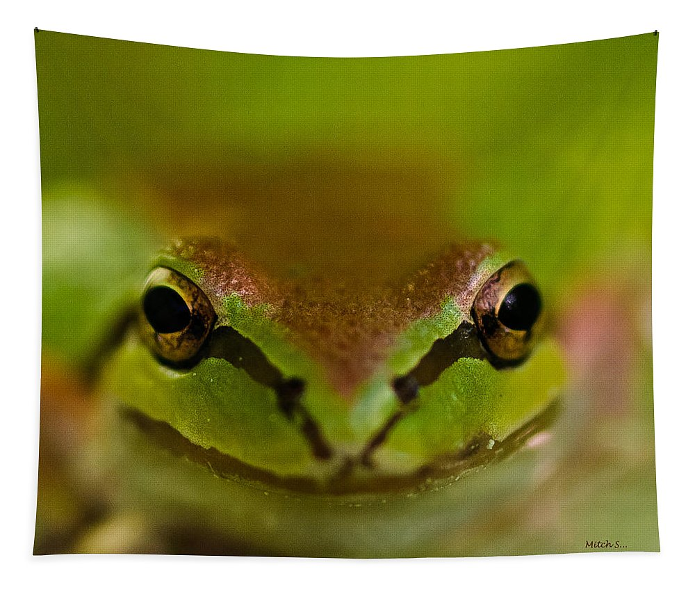 Happy Frog Tapestry featuring the photograph Happy Frog by Mitch Shindelbower