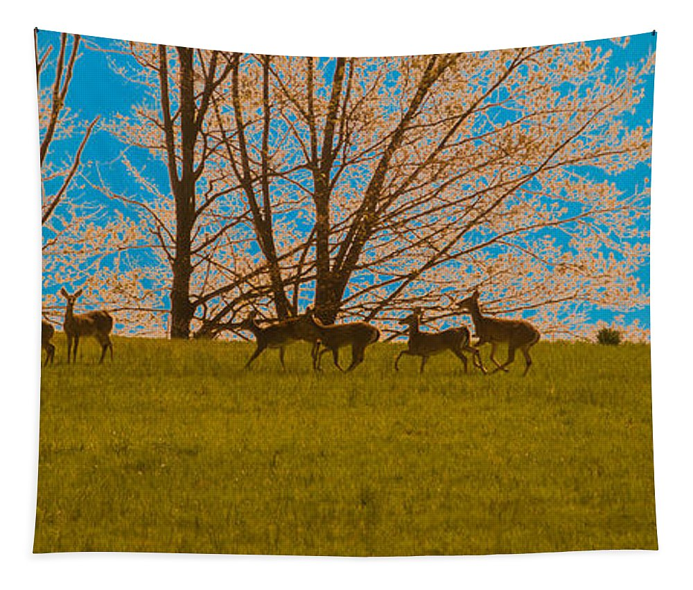 Deer Tapestry featuring the photograph Has Anyone Seen Rudolph by Trish Tritz