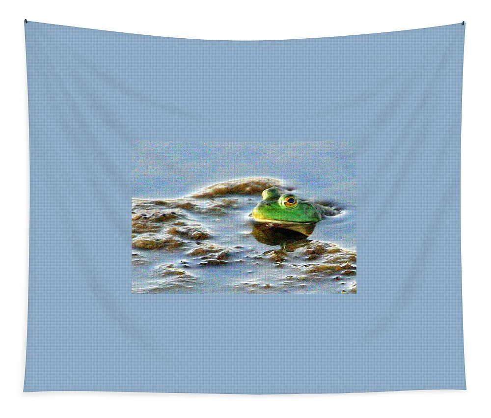 American Bullfrog Tapestry featuring the photograph Here's Looking At You by Laurel Talabere