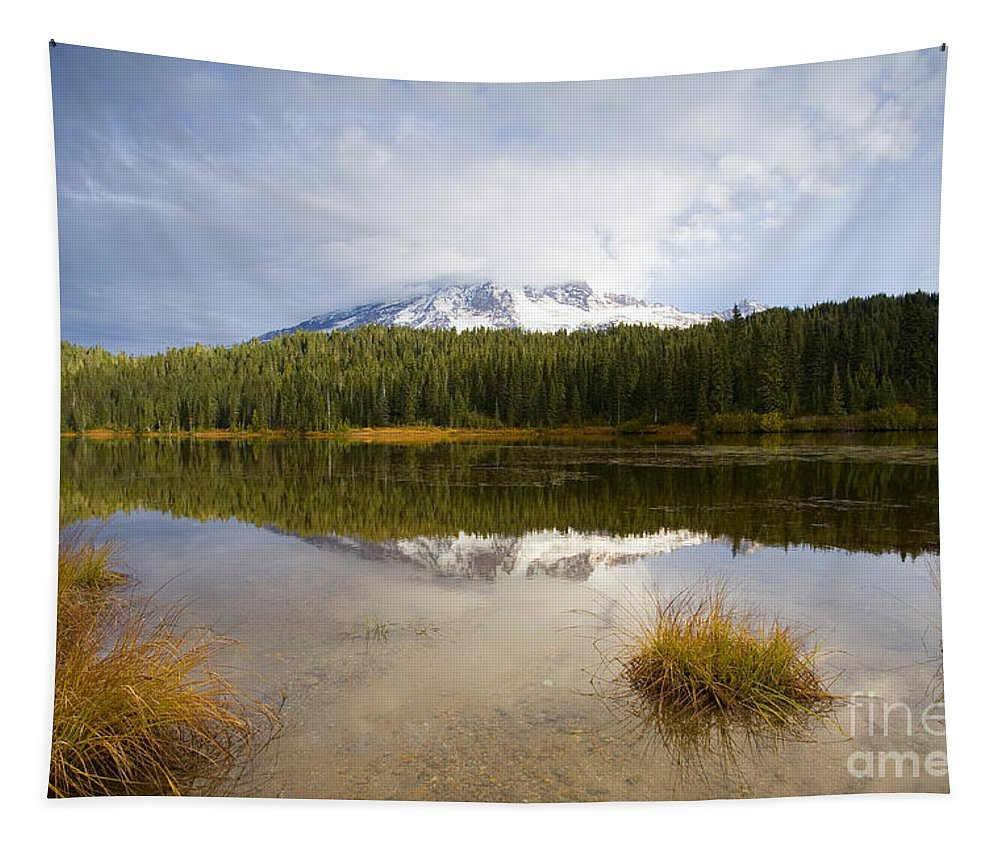 Rainier Tapestry featuring the photograph Holding Back The Tempest by Mike Dawson