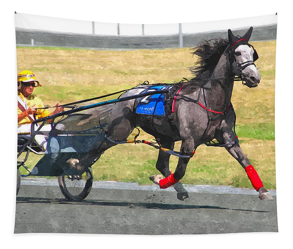 Horse Driver Trotters Racing Track Gray Tapestry featuring the photograph Hooray For The Gray by Alice Gipson