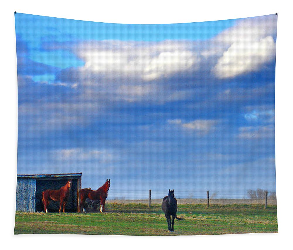 Landscape Tapestry featuring the photograph Horse Ranch Landscape by Steve Karol
