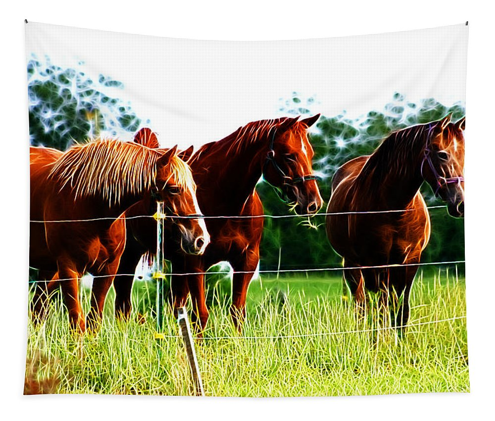 Horses Horse Pets Animals Three Pasture Field Farm Tapestry featuring the photograph Horses by Lisa Stanley