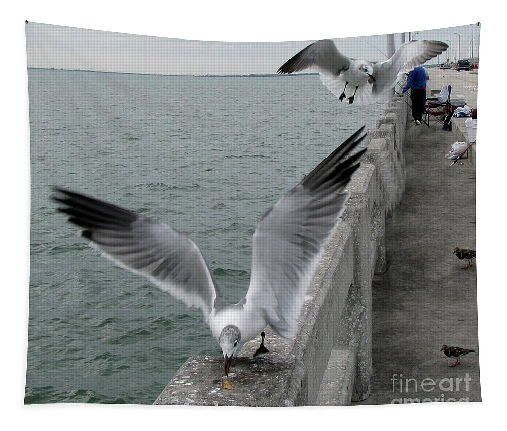 Birds Tapestry featuring the photograph I Got Here First by Donna Brown