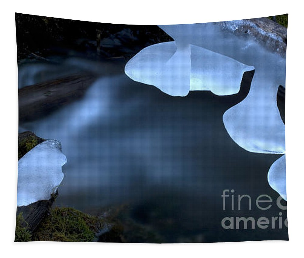 Ice Tapestry featuring the photograph Ice 12 by Bob Christopher