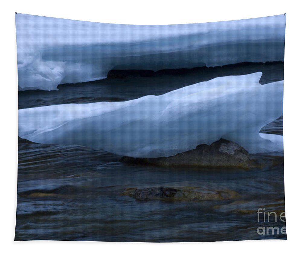 Ice Tapestry featuring the photograph Ice 15 by Bob Christopher