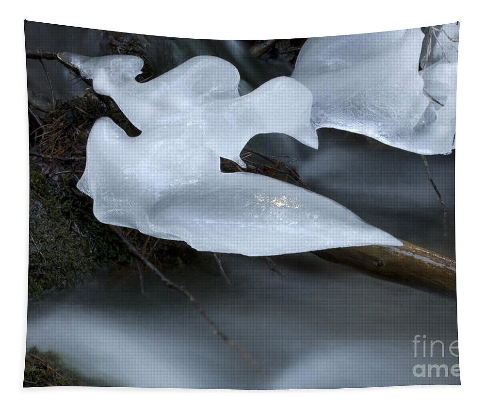 Ice Tapestry featuring the photograph Ice 3 by Bob Christopher