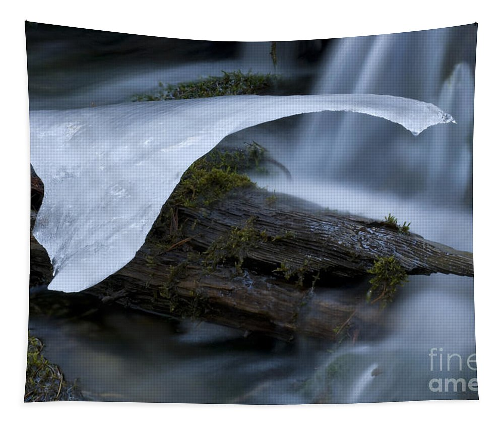 Ice Tapestry featuring the photograph Ice 5 by Bob Christopher