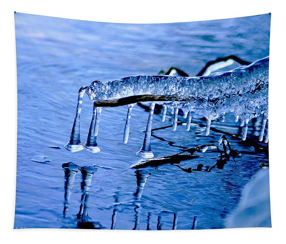 Ice Tapestry featuring the photograph Icy Reflections by Mitch Shindelbower