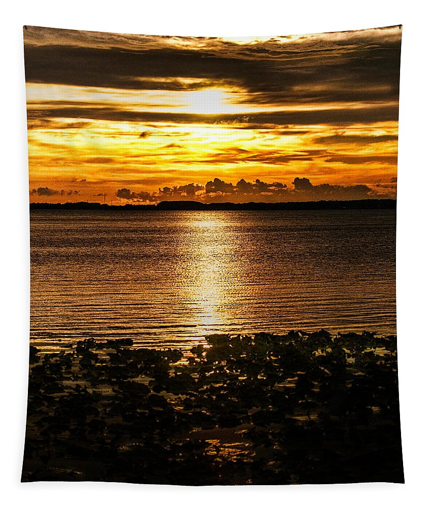 Sunset Tapestry featuring the photograph Illuminated by Christopher Holmes