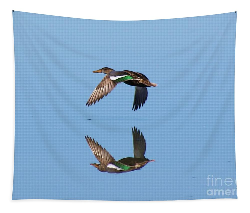 Duck Tapestry featuring the photograph Immaculate Reflection by John Kolenberg