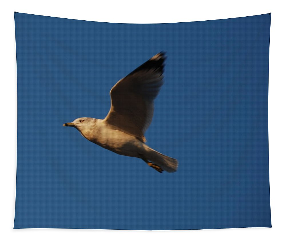 Bird Tapestry featuring the photograph In Flight by Richard Bryce and Family