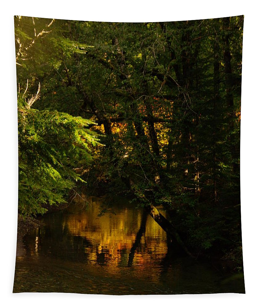 Rivers Tapestry featuring the photograph In Golden Moments Of Reflection by Jeff Swan