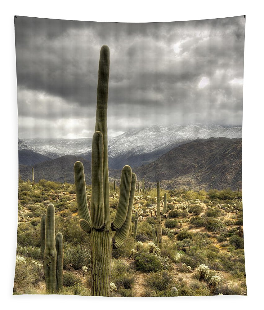 Arizona Tapestry featuring the photograph It Does Snow In The Desert by Saija Lehtonen