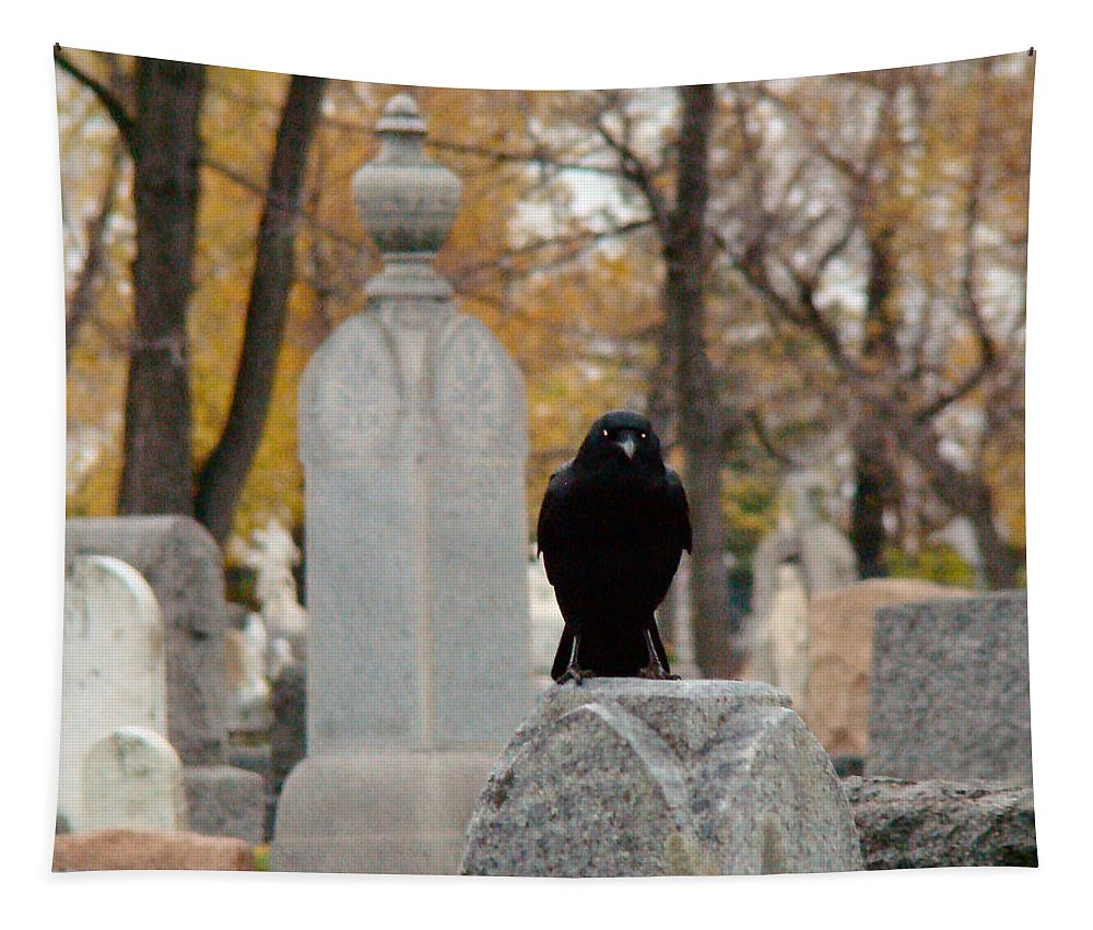 Blackbird Art Tapestry featuring the photograph It's Fall by Gothicrow Images