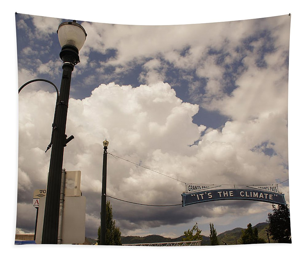 It's The Climate Tapestry featuring the photograph Its The Climate 4 by Mick Anderson